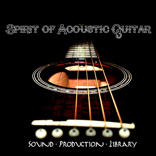 SPIRIT OF ACOUSTIC GUITAR - Large REAL Top Quality Multi-Layer WAVe/Kontakt Samples/Loops/Strum Studio Library. FREE USA Continental Shipping on DVD or download. by SoundLoad