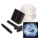 lychee 16.5ft 50LED Waterproof Solar Power String 1.2 V, Daylight White, with Light Sensor, Outdoor Rope Lights, Ideal for Christmas, Party, Wedding (White)