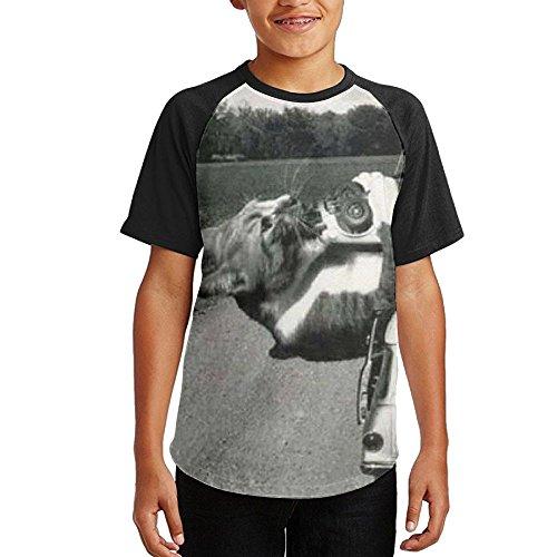 Teenagers Funny Cat Eating Car Raglan Baseball Shirts Cool Short Sleeve Graphic T Shirt