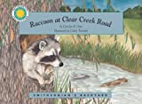 Raccoon at Clear Creek Road, Carolyn Otto, 1568991762