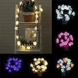 LED Lights, CieKen 20 LED Color Rattan Rose Lantern Skewers Fairy Lights For Christmas, Halloween Party, Curtain, Patio, Garden, Wedding, Christmas Tree, Event Decorative Lighting