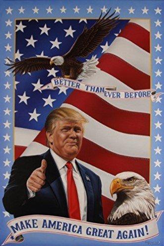 Trump America Poster Darryl Vlasak product image