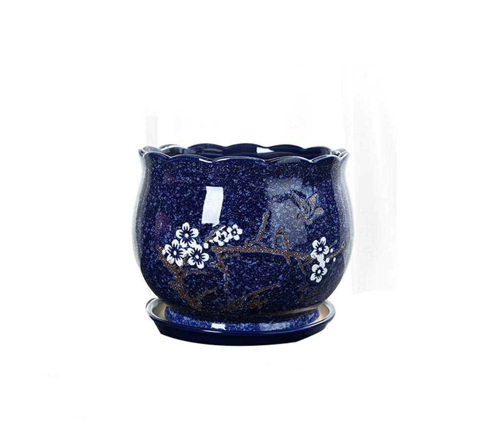 212 & Amazon.com: Large Navy Blue Ceramic Flower Pot Green Plant ...