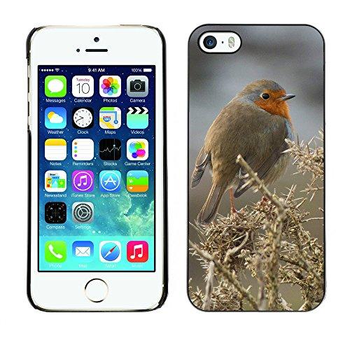 Premio Sottile Slim Cassa Custodia Case Cover Shell // F00008149 oiseau // Apple iPhone 5 5S 5G