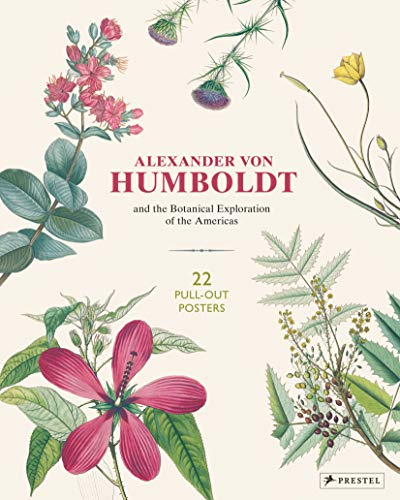 Alexander von Humboldt Botanical Illustrations: 22 Pull-Out Posters