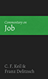 Commentary on Job (English Edition)