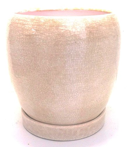- Crackle Beige Ceramic Egg Pot with Attached Saucer - 6.5