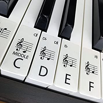 Clear standard piano keyboard stickers for up to 88 keys 88 set clear