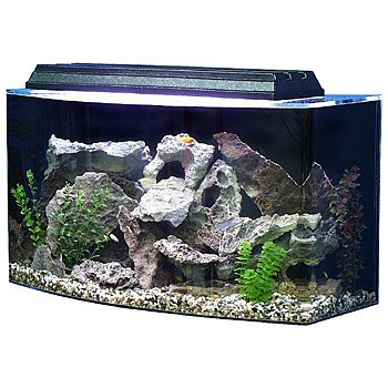 SeaClear 36 gal Bowfront Acrylic Aquarium Combo Set, 30 by 15 by 21