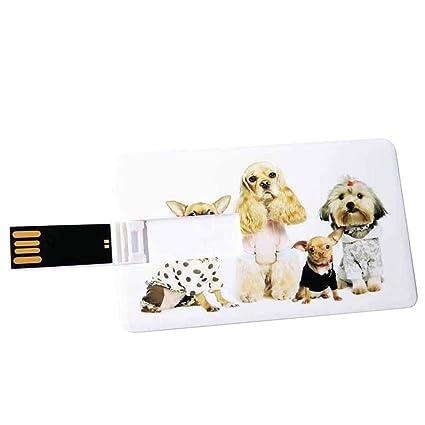 Memoria USB 2.0 DE 2 TB (1900 GB) para Tarjeta de crédito de ...