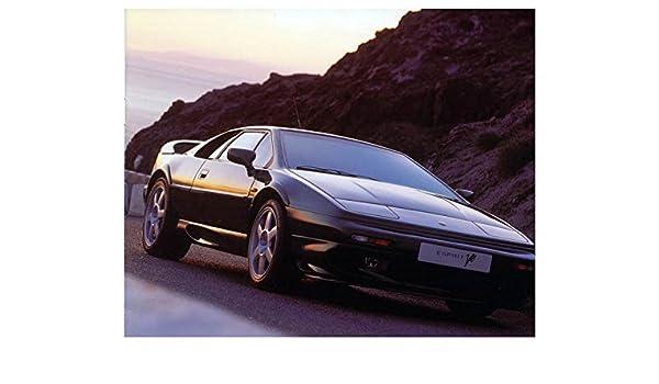 Lotus Esprit V8 Turbo Automobile Photo Poster: Entertainment Collectibles