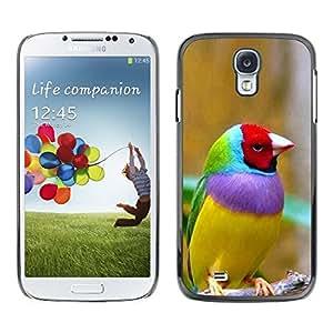 SKCASE Center / Funda Carcasa - Aves Ornitología Amarillo;;;;;;;; - Samsung Galaxy S4