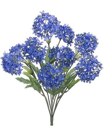 18-Snowball-Bush-x9-Blue-Helio-pack-of-12