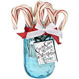 Sizzix Christmas Collection Framelits Die with Clear Acrylic Stamp Set Candy Cane Wishes (12 Pack)