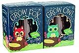 Toysmith Grow Fox & Owl Set