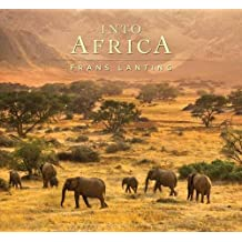 Into Africa