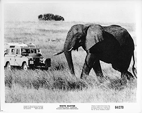 White Hunter original 1964 8x10 photo elephant faces off Land Rover in bush