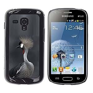 YOYOYO Smartphone Protección Defender Duro Negro Funda Imagen Diseño Carcasa Tapa Case Skin Cover Para Samsung Galaxy S Duos S7562 - pelo gris naturaleza cabeza gris de piel de aves