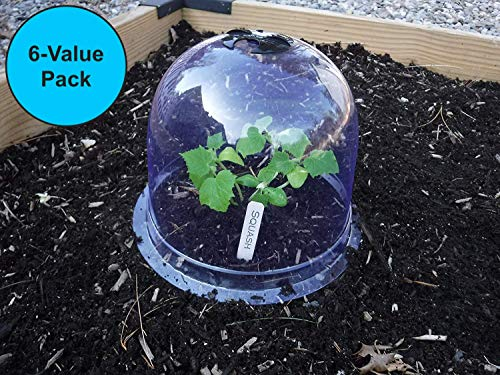 "6-Pack! GrowAway Small Reusable Plastic Mini Greenhouse, Garden Cloche Dome, Plant Covers Frost Guard Freeze Protection for Plants Outdoors, Garden Tools, Garden Accessories - 7.87"" Diam. x 6.69"" H"