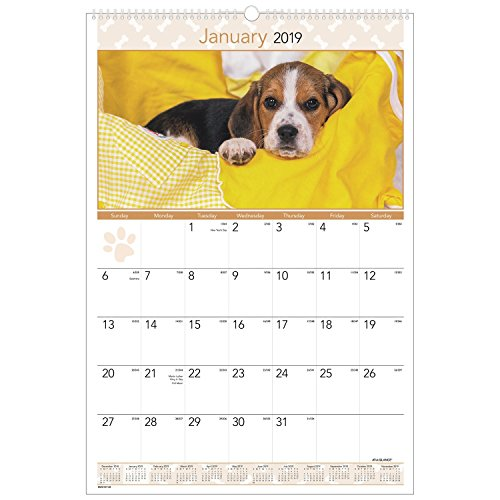 AT-A-GLANCE 2019 Monthly Wall Calendar, 15-1/2 x 22-3/4, Large, Puppies (DMW16728)