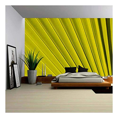 wall26 - Texture of Green Palm Leaf Pattern Backround - Removable Wall Mural | Self-Adhesive Large Wallpaper - 100x144 inches ()