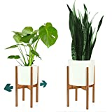 FOX & FERN Mid-Century Modern Plant Stand - Adjustable Width 8' up to 12' - Bamboo - EXCLUDING White Ceramic Plant Pot