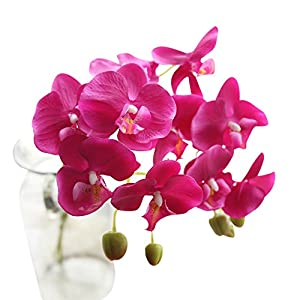 Garood Artificial Phalaenopsis Bonsai Real Touch Fake Orchids Flowers PU Home Office Party Decor (E) 63