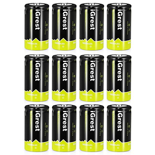 iGrest Rechargeable D Batteries 10000mAh Ni-MH D Size Cell Battery with Box (12 Pack) by iGrest
