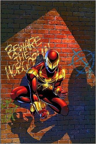 Amazon com: Friendly Neighborhood Spider-Man, Vol  1