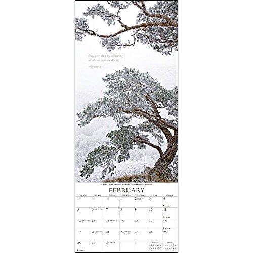 The Present Moment 2017 Calendar Photo #4