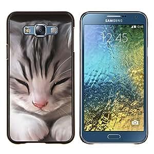 Gatito del gato Maine Coon Casa Sleepy- Metal de aluminio y de plástico duro Caja del teléfono - Negro - Samsung Galaxy E7 / SM-E700