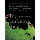 The Leafcutter Ants: Civilization By Instinct