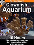 Clownfish Aquarium - 10 hours Giant Relaxing Saltwater Fish Tank Nature Video with No Music