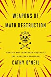 img - for Weapons of Math Destruction book / textbook / text book