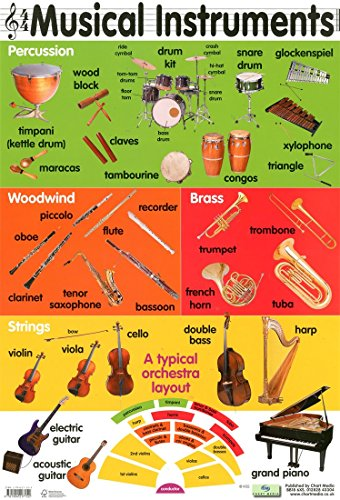 Musical Instruments of the Orchestra Poster 40x60cm: Amazon.co.uk ...