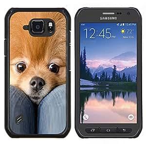 LECELL--Funda protectora / Cubierta / Piel For Samsung Galaxy S6Active Active G890A -- Pomerania perro de mascota Oro lindo Piel --