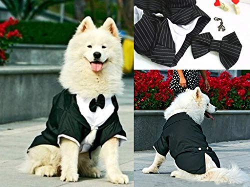 Formal Wedding Tuxedo Jacket with Tails - Costume Comes with Bow Tie and Theme Accessory - Big Dog Sizes - Black/White Pinstripe (Black White Pinstripe, 4XL (Chest 28