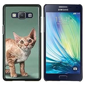 Stuss Case / Funda Carcasa PU de Cuero - Lindo gato - Samsung Galaxy A5 ( A5000 ) 2014 Version