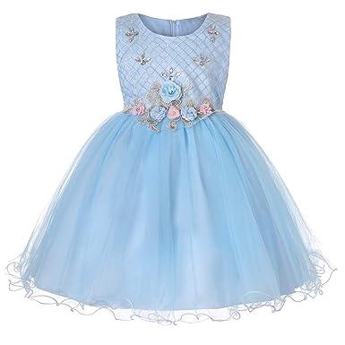 294757c99aa1 Amazon.com  Flower Little Girl Party Dress Girls Elegant Tulle ...