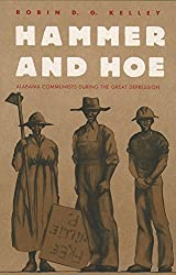 Hammer and Hoe (Fred W. Morrison Series in Southern Studies)
