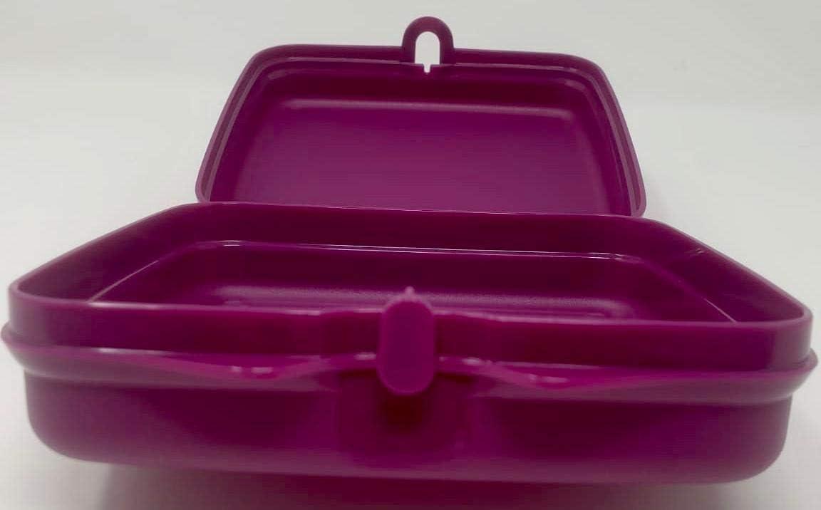 Tupperware Tupper Bo/îte /à Sandwich pour Enfant Motif Princesse Elsa Anna Frozen to Go Twin Lilas