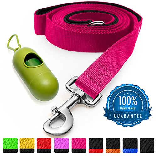 colorful dog leash - 3