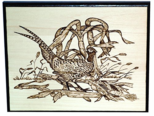 Best Wood burning art kit (September 2019) ☆ TOP VALUE