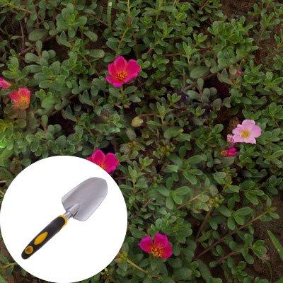 Cuigu Grand Grip Trowel Outils de jardinage avec poign/ée ergonomique id/éal pour la pose de plantes