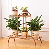 HZB Iron Flower Rack,Golden Living Room Balcony Floor Flower Pot Rack, Room Inside and Outside Green Lace Flower Shelf.