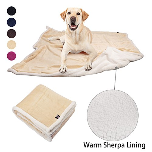 - Pawsse Dog Puppy Blanket, Super Soft Warm Micro Fleece Plush Sherpa Pet Cat Throws Blanket Snuggle Cushion Mat for Small Animals 60x49