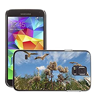 Super Stella Slim PC Hard Case Cover Skin Armor Shell Protection // M00104906 Nature Sky Clouds Blue Flower Grass // Samsung Galaxy S5 S V SV i9600 (Not Fits S5 ACTIVE)