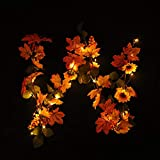 H+K+L Halloween 1.8M LED Lighted with Battery Operated Fall Autumn Pumpkin Maple Leaves Garland Decor (Mint Green)