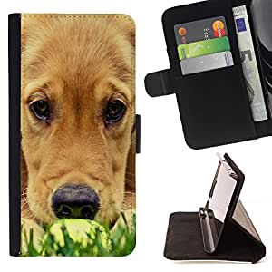 Momo Phone Case / Flip Funda de Cuero Case Cover - Labrador Golden Retriever Bozal perro Hierba; - Apple Iphone 6