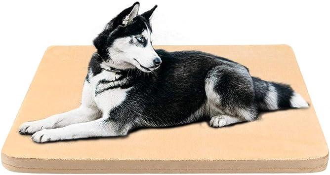 Amazon.com: JoicyCo - Cama ortopédica de espuma para perro ...
